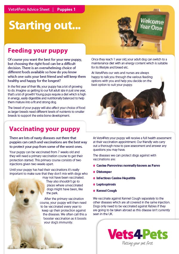 New puppy advice sheet